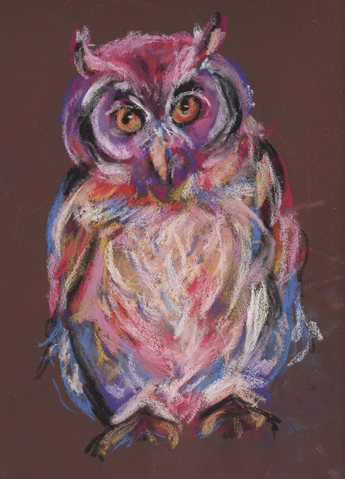 colorful pastel owl
