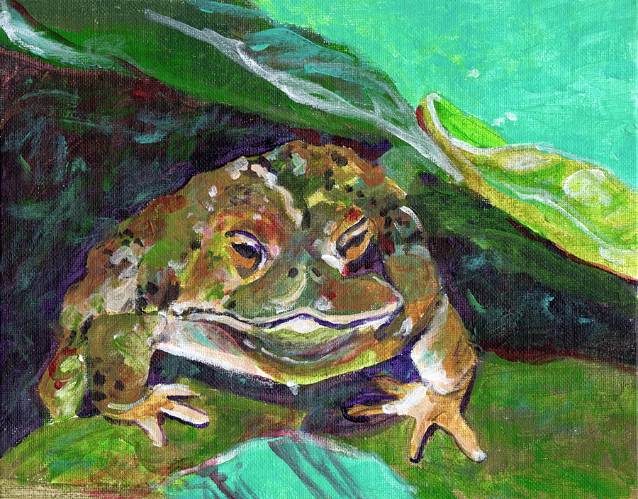 painting of frog